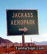 jackass.jpg